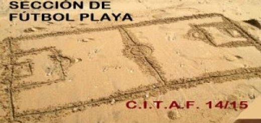seccion futbol playa